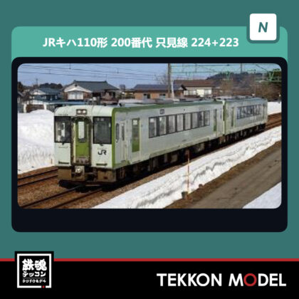 Nゲージ  GREENMAX 31520 JRキハ110形(200番代・只見線・224+223)2両編成セット(動力付き)...